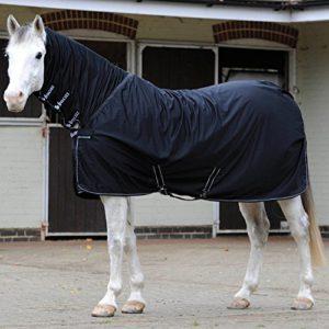 Übergangsdecke Pferd