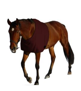 Scheuerschutz Pferd