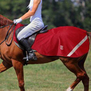 Pferde Übergangsdecke Nierendecke
