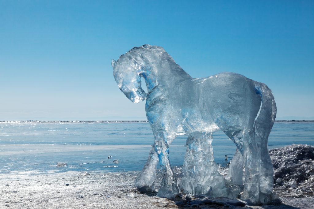 Pferde Winterdecken